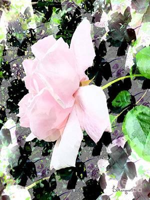 Mixed Media - Pink Rose by Barbara Moignard