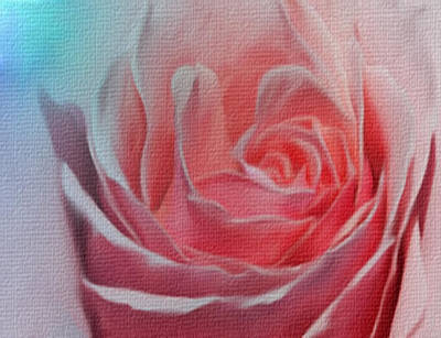 Mixed Media - Pink Rose Blue Canvas by Dennis Buckman