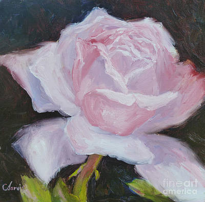 Painting - Pink Rose by Carolyn Jarvis