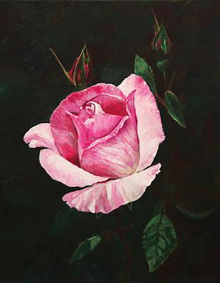 Priska Wettstein Pink Hues Royalty Free Images - Pink Rose Royalty-Free Image by Masha Batkova