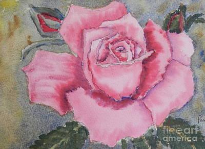 Pink Rose Art Print by Pamela  Meredith