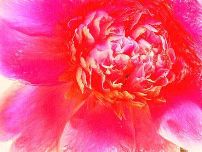 Pink Rose Pastel Art Print by MotionAge Designs