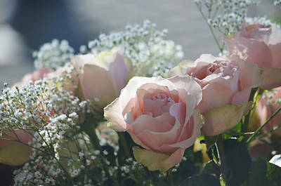 Photograph - Pink Roses by Deprise Brescia