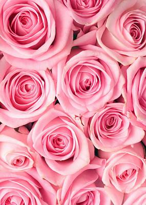 Pink Roses Art Print by Munir Alawi