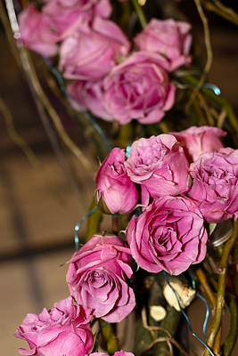 Photograph - Pink Roses by Patrice Zinck