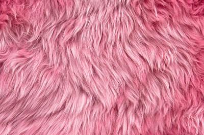 Pink Sheepskin Art Print