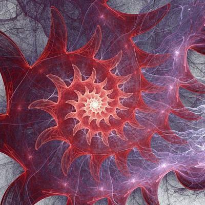 Shell Digital Art - Pink Shell by Anastasiya Malakhova