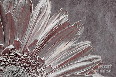 Pink Silver Art Print by Lois Bryan