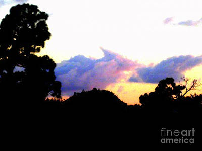 Photograph - Pink Skies by Vicki Lynn Sodora