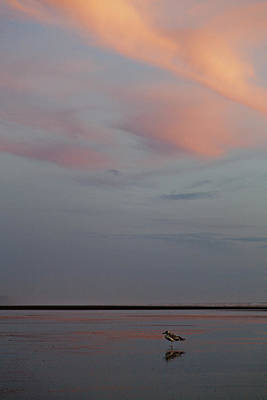 Photograph - Pink Sky And Sand by Kjirsten Collier