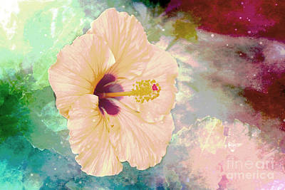 Pl Photograph - Pink Soft Hibiscus by Beverly Guilliams