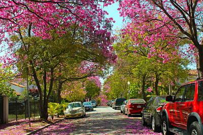 Photograph - Pink Street by Gary Dunkel