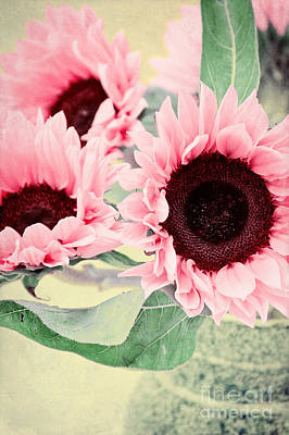 Pink Sunflowers Art Print by Angela Doelling AD DESIGN Photo and PhotoArt