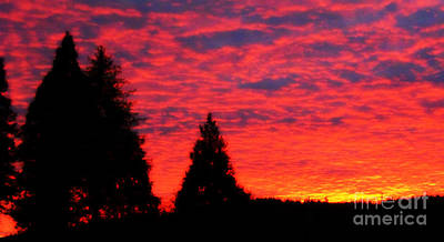 All American - Pink Sunset in Oregon by Mindy Bench