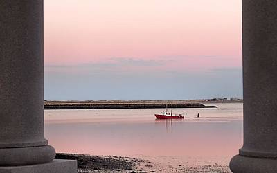 Photograph - Pink Sunset by Janice Drew