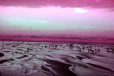 Pink Swirl Beach Original