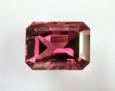 Tourmaline Photograph - Pink Tourmaline by Dorling Kindersley/uig