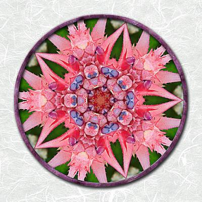 Pink Tropical Bromeliad Mandala On Green Tinted Rice Paper Art Print by Elaine Plesser