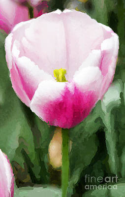 Digital Art - Pink Tulip - A Digital Painting by David Perry Lawrence