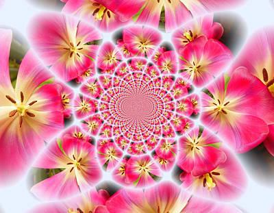 Photograph - Pink Tulip Kaleidoscope by Sheri McLeroy