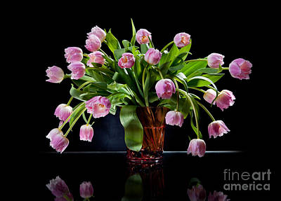 Womens Photograph - Pink Tulips Bouquet Sag In Glass Vase On Black  by Arletta Cwalina
