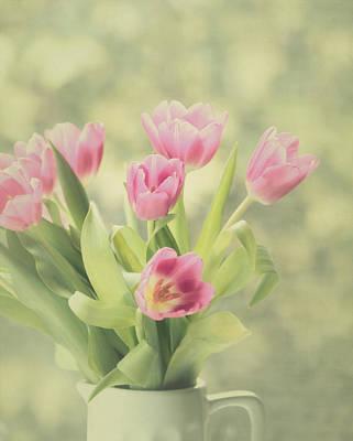 Kim Photograph - Pink Tulips by Kim Hojnacki