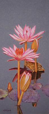 Painting - Pink Water Lilies by Marna Edwards Flavell