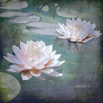 Photograph - Pink Water Lilies - Textured Photo Art by Ann Powell