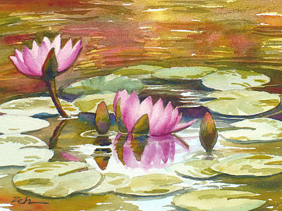 Painting - Pink Waterlilies by Janet Zeh