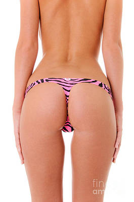 Pink Zebra Thong Art Print by Jt PhotoDesign