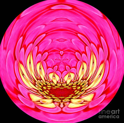 Pink Zinnia Polar Coordinate 2 Art Print by Rose Santuci-Sofranko