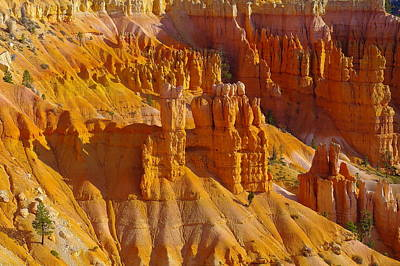 Pinnicles At Sunset Point Bryce Canyon National Park Art Print by Jeff Swan