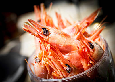 Photograph - Pint Of Prawns  by Silken Photography