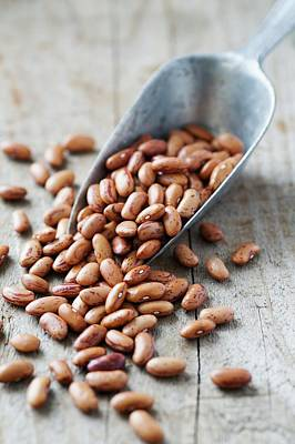 Pinto Photograph - Pinto Beans by Gustoimages
