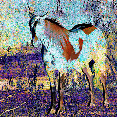 Equine Digital Art - Pinto Horse by Cassie Peters