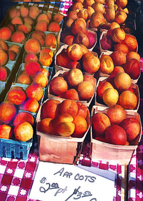 Grocery Store Painting - Pints Of Apricots On Checkered Cloth by Elaine Plesser