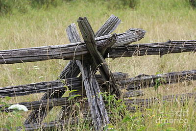 Photograph - Pioneer Fences by Margaret Hamilton