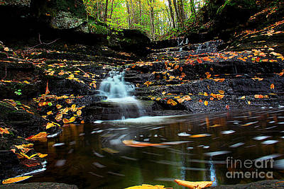 Photograph - Pipestem Falls by Melissa Petrey