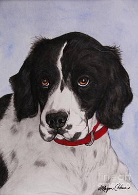 Pet Portraits Painting - Pippy The Springer Spaniel by Megan Cohen