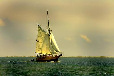 Photograph - Pirate Ship  by Debra Forand