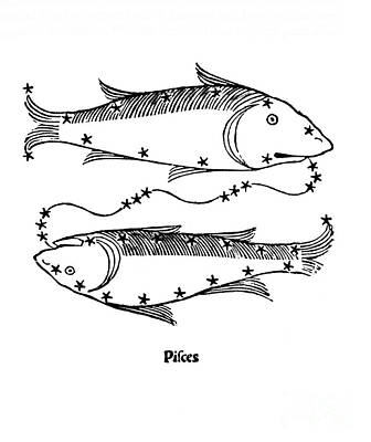 Astrology Photograph - Pisces Constellation Zodiac Sign 1482 by Science Source