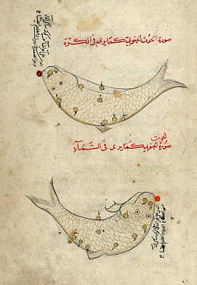Sufi Photograph - Piscis Austrinus Constellation by Library Of Congress
