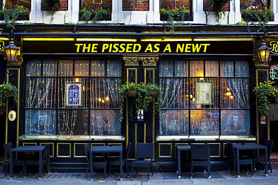 Pissed As A Newt Pub  Print by David Pyatt