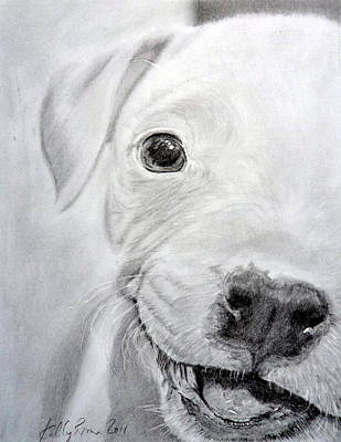 Pitbull Drawing - Pit-bull Puppy by Skyrah Saunders