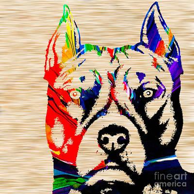 Bull Terrier Mixed Media - Pitbull Love by Marvin Blaine