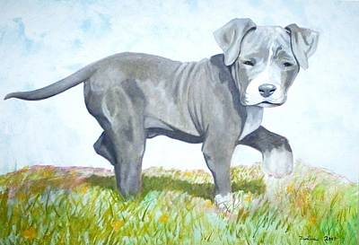 Painting - Pitbull Puppy by PacKlui Studio