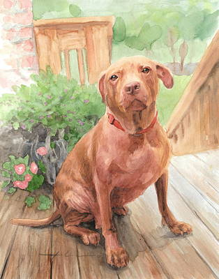 Pitbull Drawing - Pitbull Watercolor Portrait by Mike Theuer