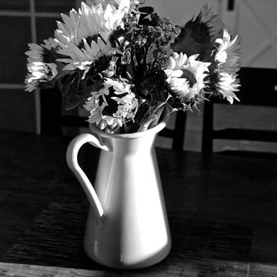 Photograph - Pitcher Of Joy by Eric Tressler