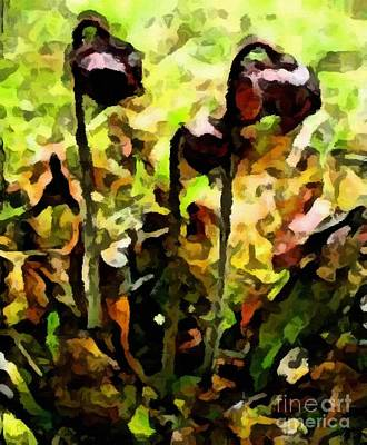 Pitfalls Digital Art - Pitcher Plant Abstraction by Barbara Griffin