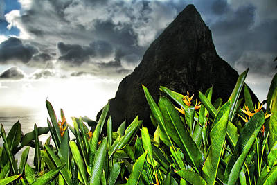 Photograph - Piton by Renee Sullivan